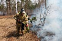 В пяти районах Иркутсткой области из-за лесных пожаров введён режим ЧС