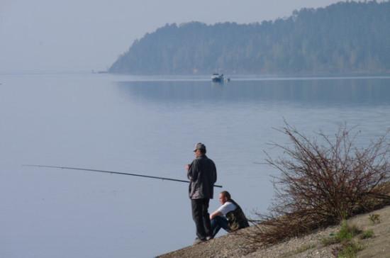 Правительство будет рассчитывать суммы ущерба от незаконного вылова рыбы