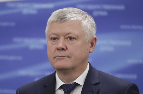 Пискарев предложил проанализировать меры защиты лесов