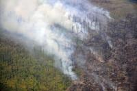 Кабмин направит деньги из резерва на тушение лесных пожаров