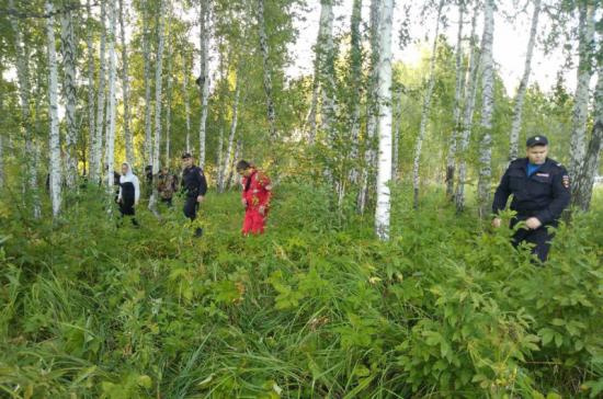 Пропавший в лесу под Омском мальчик найден живым