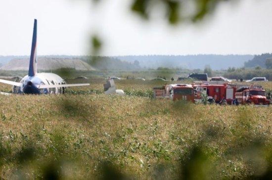 Росавиация не планирует проверять «Уральские авиалинии» после экстренной посадки самолёта