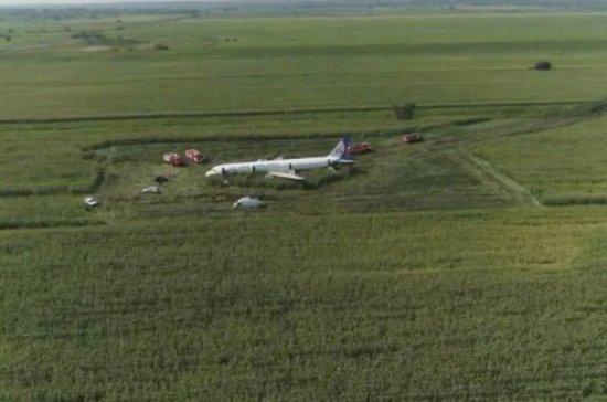 В СК опровергли информацию о мародёрстве на месте жёсткой посадки АЗ21