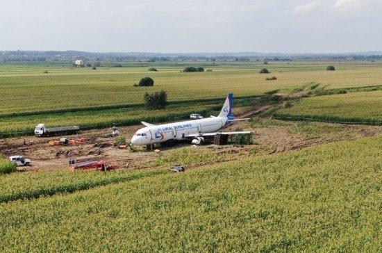 Эксперты завершили работу на месте аварийной посадки А321 в Подмосковье