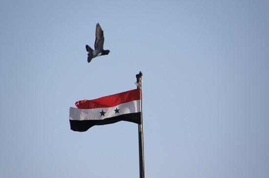 Сирийские войска 31 августа в одностороннем порядке прекратят огонь в Идлибе