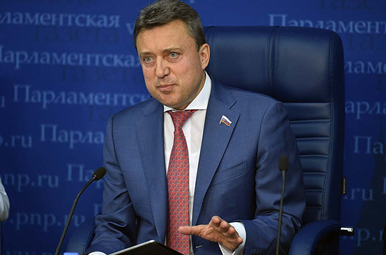 В Госдуме рассказали, кто будет обеспечивать порядок во время выборов в Мосгордуму
