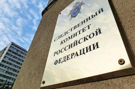СК предъявил обвинение подозреваемому в нападении на Эллу Памфилову