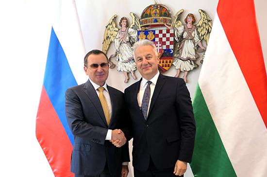 Фёдоров отметил важность межрегионального сотрудничества России и Венгрии