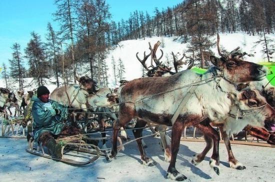 В России могут начать вести учёт представителей коренных малочисленных народов