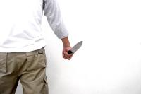 В Совфеде рассказали, когда появится закон о бытовом насилии