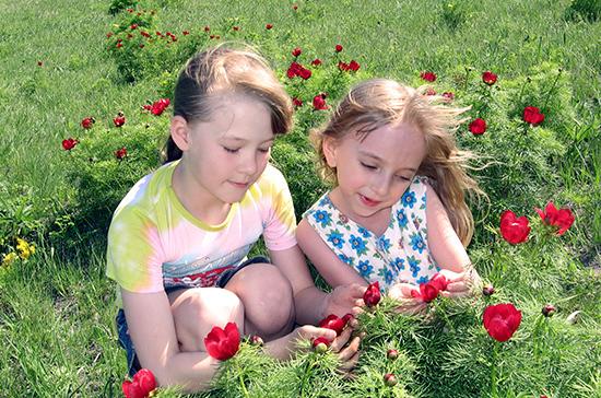 В регионах могут появиться специальные комиссии по детскому отдыху