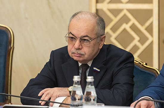 Умаханов: в Совфеде заинтересованы в развитии отношений с парламентариями Египта