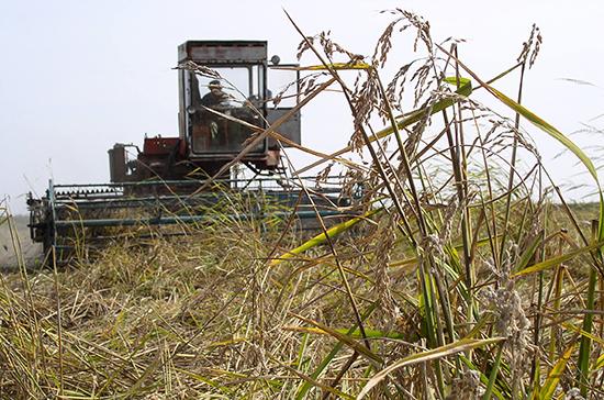 Восстанавливать плодородие сельхозземель предстоит с картой в руках