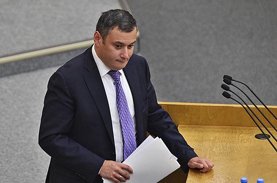 В Госдуме пообещали тщательно изучить законопроект о защите полицейских от клеветы в интернете