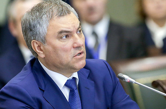 Володин предложил до конца года разработать проект о запрете точечной застройки
