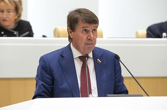 Сенатор оценил заявление немецкого политика о санкциях против России