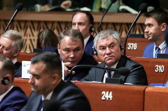 Володин: ПАСЕ должна базироваться на принципах парламентаризма
