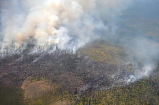 Следствие даст оценку действиям чиновников в ситуации с природными ЧС в Сибири, заявил Патрушев