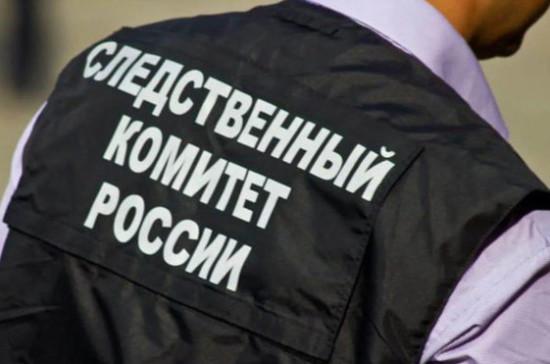 Следственный комитет начал проверку в связи с отравлением детей в школе под Нижним Новгородом