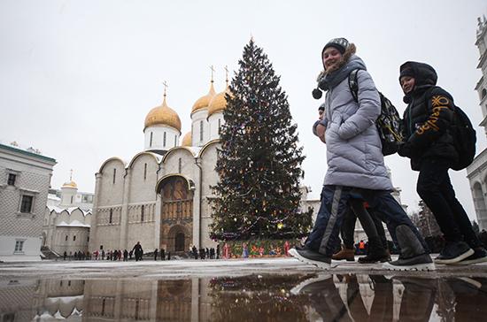 Главную новогоднюю ель страны привезут в Москву 15 декабря