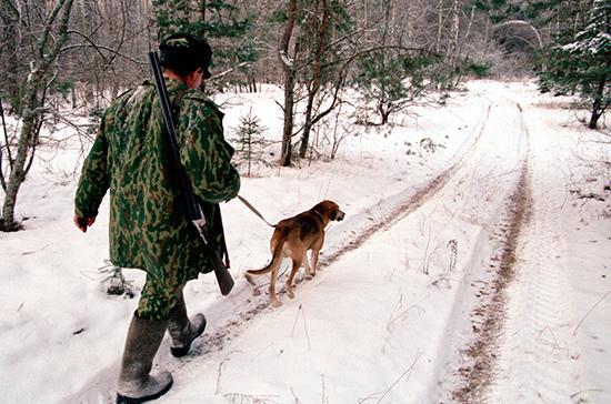 Госдума приняла в первом чтении законопроект об охоте в искусственных условиях