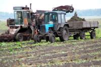 Владимир Путин призвал создать условия для развития мелких семейных фермерских хозяйств