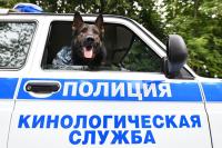 В Калининграде прошли обучение служебные собаки флота