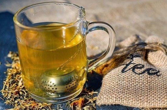 Учёные выяснили, почему любители чая живут дольше