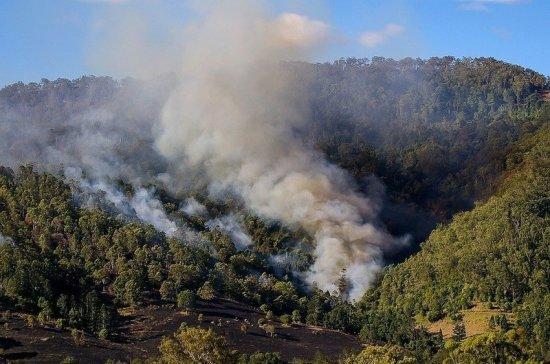 Эксперт рассказал, как пожары в Австралии повлияют на планету