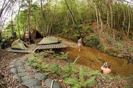 Планы по строительству турбаз на лесных участках собираются скорректировать
