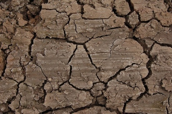 Срок простоя земель сельхозназначения для их изъятия предложили сократить