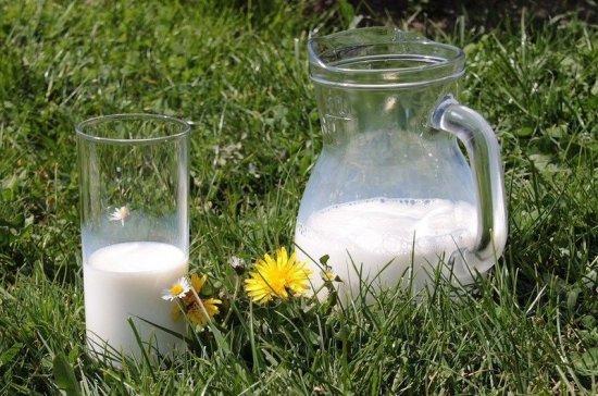 В Роскачестве рассказали, почему опасно покупать молоко на рынке