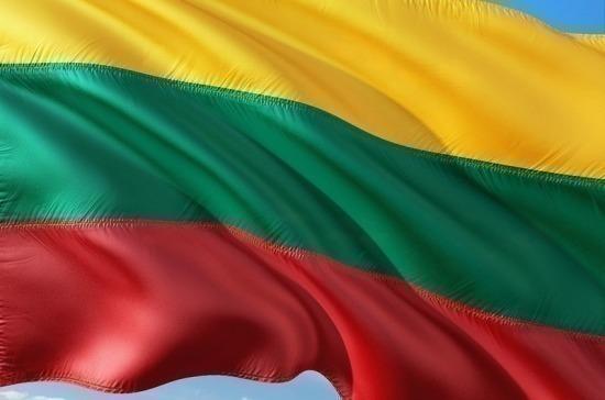В Литве предложили учредить Центр гражданской безопасности Евросоюза