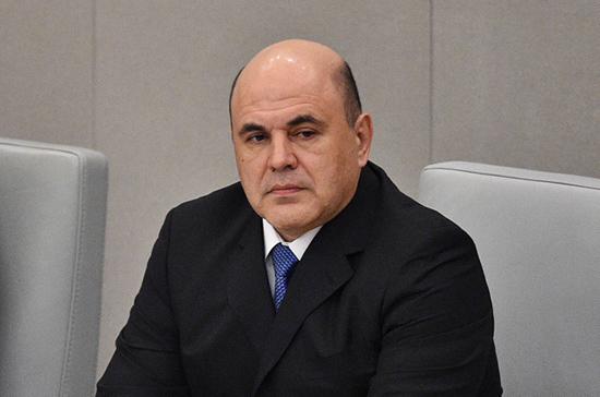 Мишустин сменил директора департамента природных ресурсов Правительства