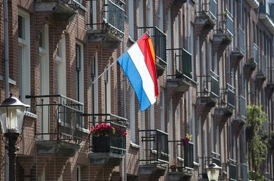Политолог прокомментировал отказ делегации из Нидерландов ехать в Россию