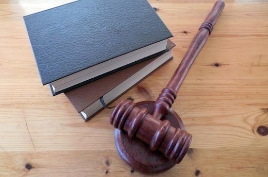 В Госдуму внесён законопроект, уточняющий терминологию в федеральных конституционных законах