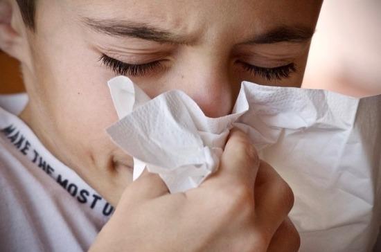 В 23 регионах РФ превышен эпидемический порог гриппа и ОРВИ