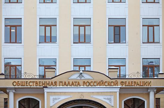 В Общественной палате рассказали о готовности инфраструктуры для отслеживания чистоты всенародного голосования
