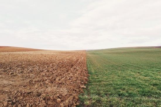Росреестр получил полномочия по регулированию земельных отношений