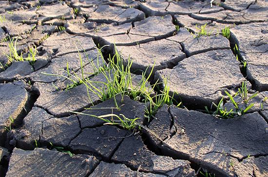 У земель сельскохозяйственного назначения появятся четкие границы