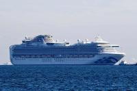 Незаражённые пассажиры судна в Японии начнут покидать его с 19 февраля