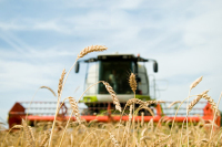 Собственников сельхозугодий могут обязать следить за плодородием земель