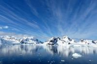 Госдума одобрила в первом чтении введение льгот для бизнеса в Арктике