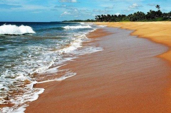 Шри-Ланка прекратит выдачу виз россиянам по прилету