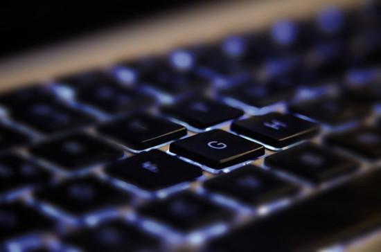 Госдума приняла в первом чтении проект о продлении эксперимента по цифровому голосованию