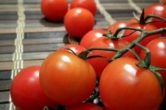 Минсельхоз ожидает рекордного объёма производства тепличных овощей в 2020 году