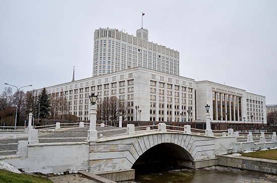 Мишустин обсудил с Володиным инициативы Правительства по борьбе с коронавирусом