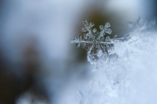 Синоптик: в Центральную Россию возвращается зимняя погода