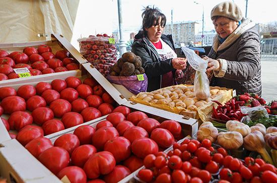 Минсельхоз рассмотрит возможность ограничения импорта помидоров в Россию