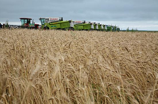 К сезонным полевым работам могут привлечь студентов аграрных вузов и осуждённых